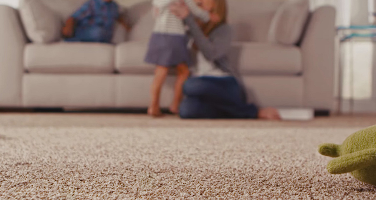 New Westminster carpet cleaning