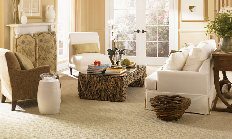 Vancouver Upholstery Cleaning
