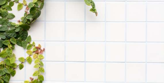 Tile and Grout Cleaning with Dazzle CC