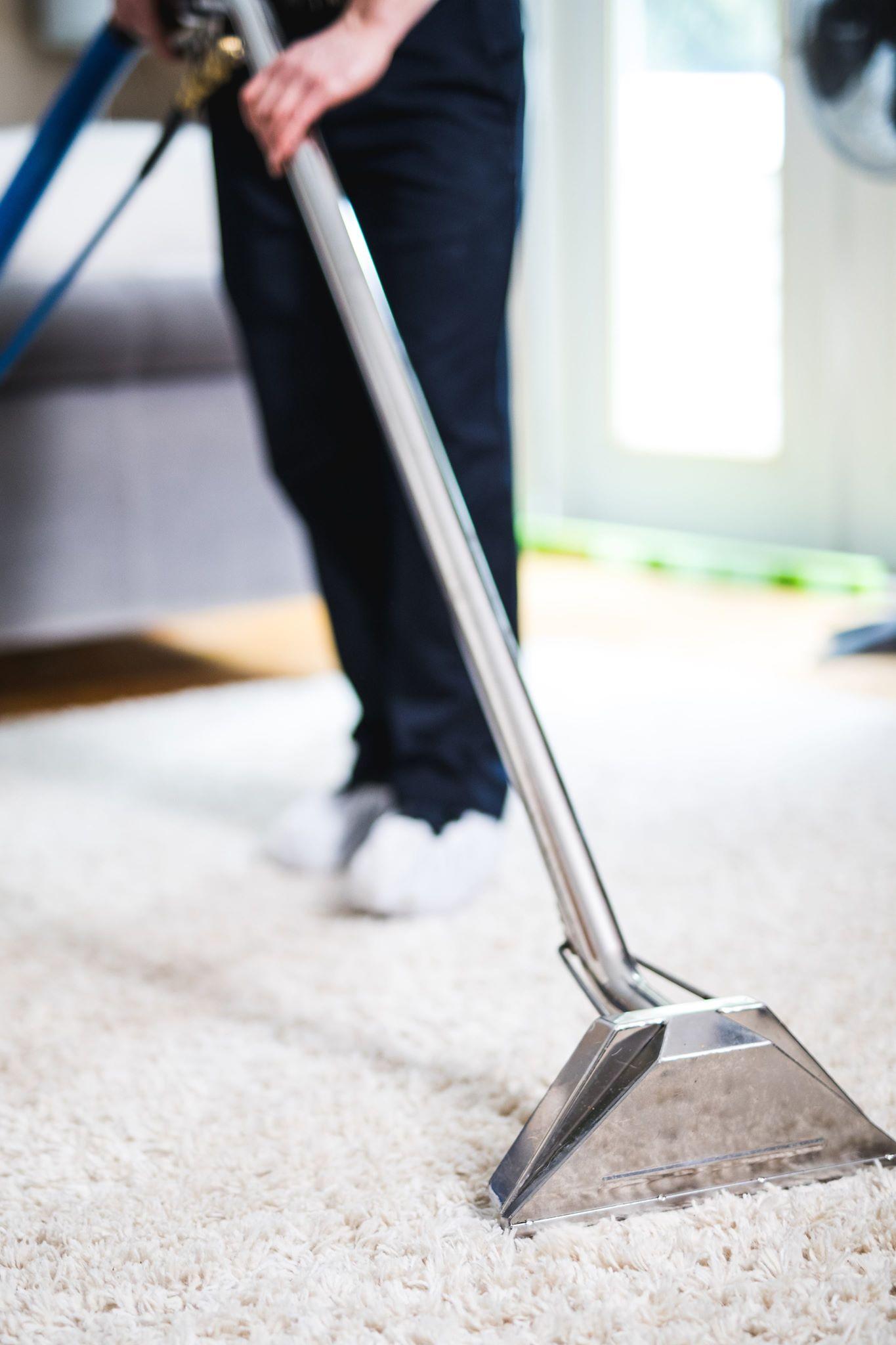Best Carpet for your Rental