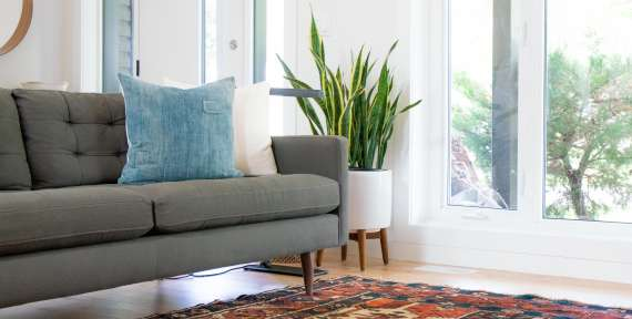 Carpet Cleaning Services Delta
