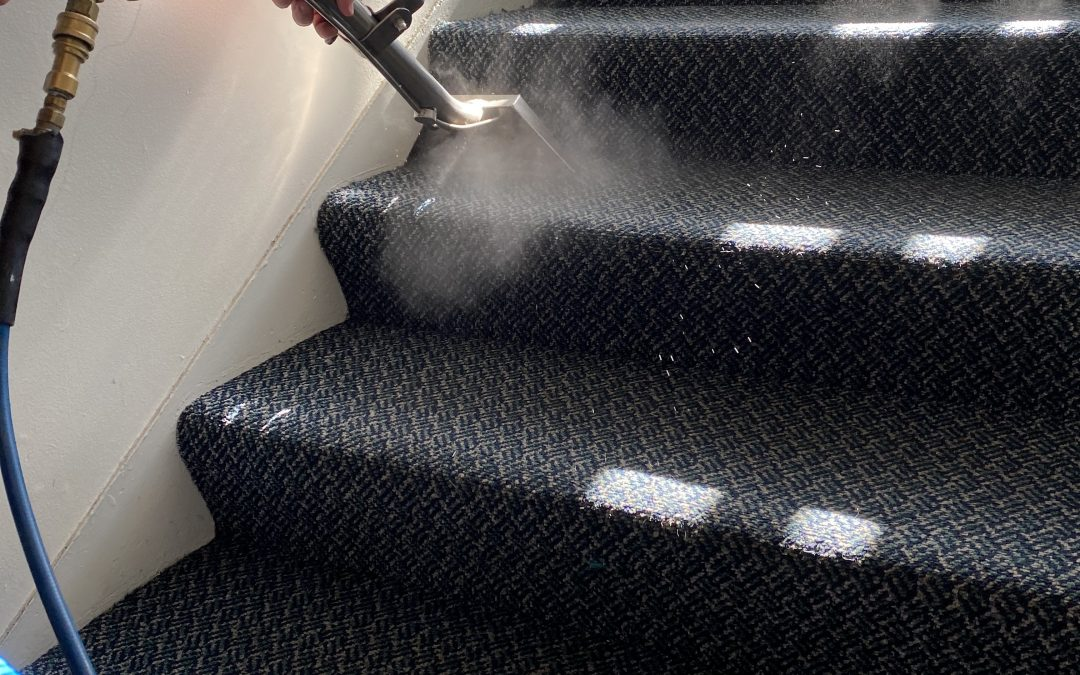 Clean Carpets with Dazzle