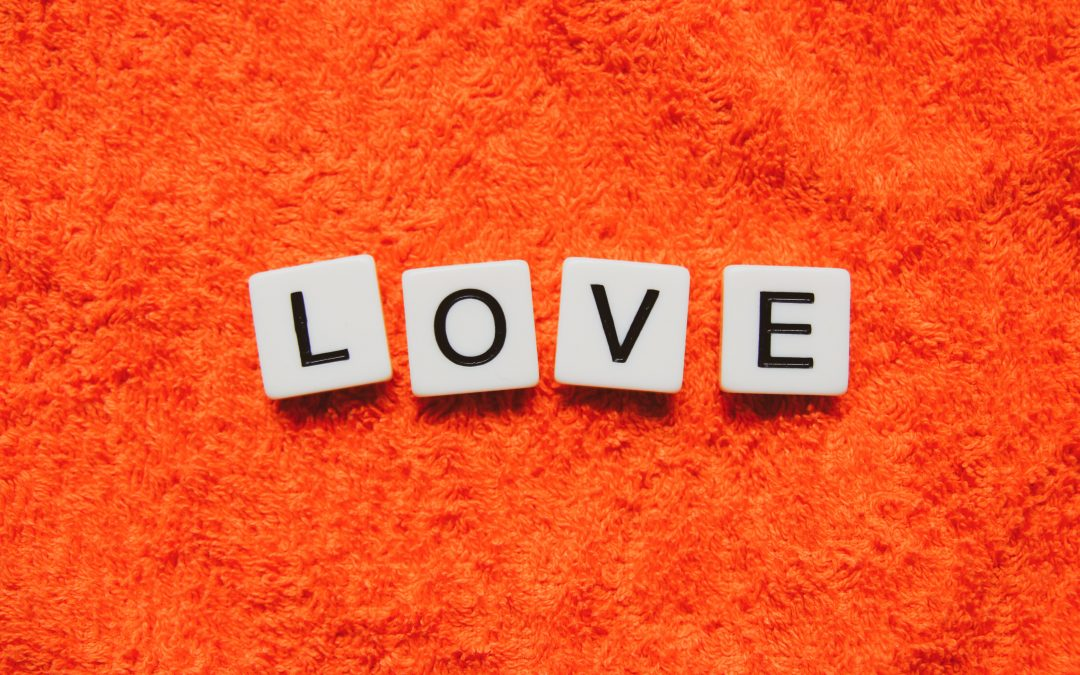 Reasons to Love Dazzle Carpet Cleaning